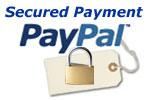 Pay pal security